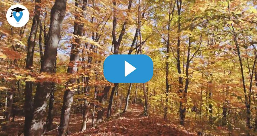 canada-video